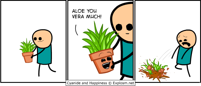 Aloe you vera much!