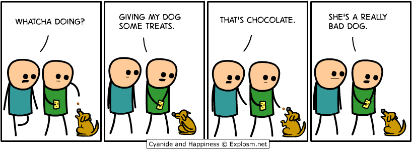 dog chocolate
