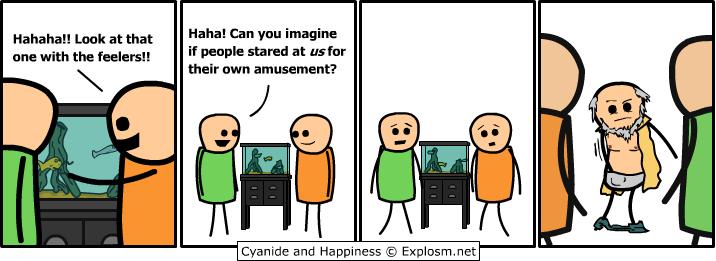 http://files.explosm.net/comics/Rob/fishtank.png